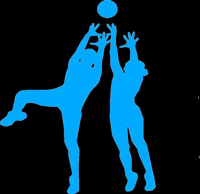 Sparte Volleyball